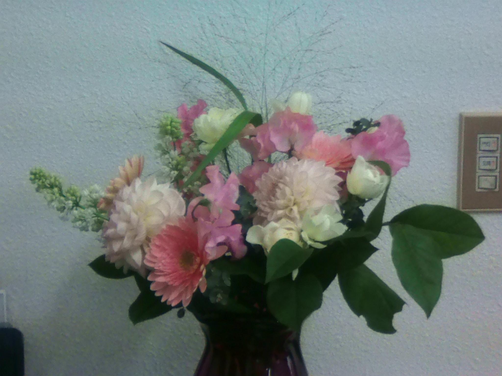 花を頂きました。